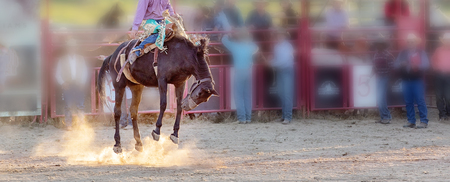 Bucking bronc horse riding competition entertainment at country rodeo Фото со стока - 120672745