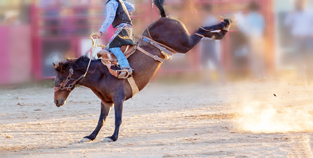 Bucking bronc horse riding competition entertainment at country rodeo Imagens