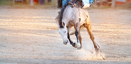 Bucking bronc horse riding competition entertainment at country rodeo Фото со стока