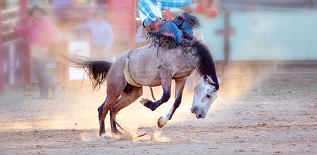 Bucking bronc horse riding competition entertainment at country rodeo Фото со стока - 120672836