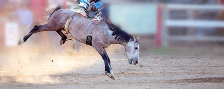 Bucking bronc horse riding competition entertainment at country rodeo Фото со стока - 120672840