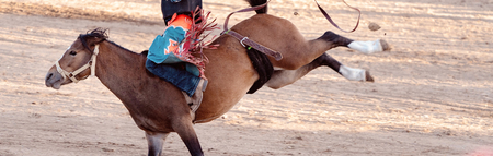 Bucking bronc horse riding competition entertainment at country rodeo