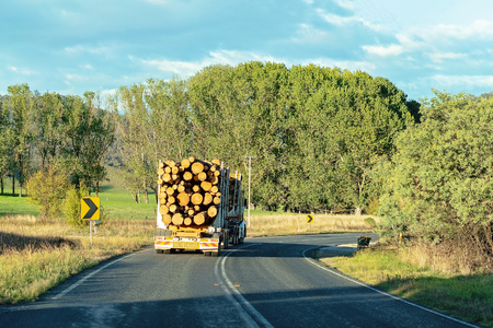 A logging truck hauling timber on an Australian bitumen country highway