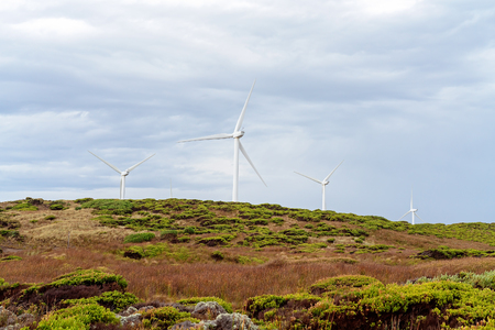 Wind turbines on the coast of Victoria Australia in an area known for its petrified forest and blow hole near Portland