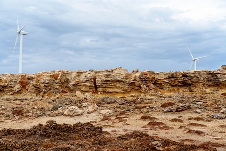 "Petrified Forest formation, hollow tubes of limestone called ""solution pipes"", eroded by millions of years of rainfall. On the coastline of Victoria Australia. Imagens"