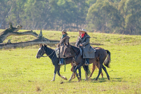 CORRYONG, VICTORIA, AUSTRALIA - APRIL 5TH 2019: The Man From Snowy River Bush Festival re-enactment, riders on horseback arrive in period costume on 5th April 2019 during the re-enactment of Banjo Pattersons epic poem.