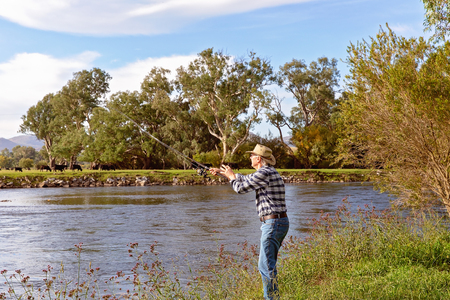 Senior male on holiday fly fishing for trout in a fast flowing river with cows grazing in the background Banco de Imagens