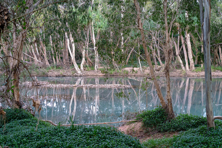 A beautiful blue water creek with shallow depth now, but which has flooded many homes during the wet season in north Queensland Australia. Environmental climate change.