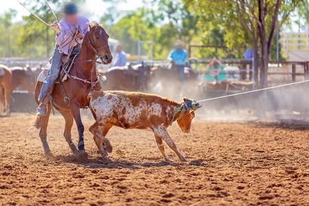 Hombres a caballo enlazando un ternero corriendo como un equipo en el evento deportivo de roping de terneros en un rodeo de país