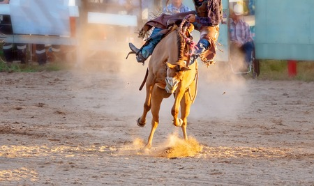 Cowboy rides a bucking bronc horse in a sanctioned competition event at an Australian country rodeo Reklamní fotografie
