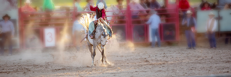 Cowboy rides an energetic bucking bronc horse in a sanctioned competition event at a country rodeo