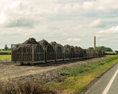 Harvested sugar cane being carted to the mill by rail in bins along a highway in Australia