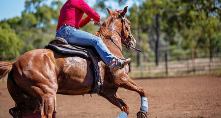 Close up of competitor on horseback making a figure eight turn in a barrel race at outback country rodeo Stock Photo