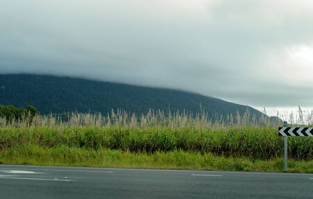 Directional arrow signs on side of highway in front of a field of sugar cane with mountains and cloudy sky Reklamní fotografie - 129924930