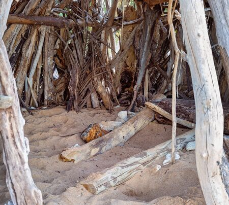 Inside a crudely constructed fun shelter made from driftwood on an Australian beach