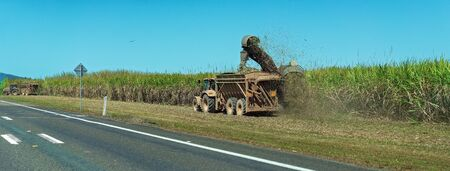 A cane harvester cutting sugar cane by the roadside and a tractor carting the crop to the refinery