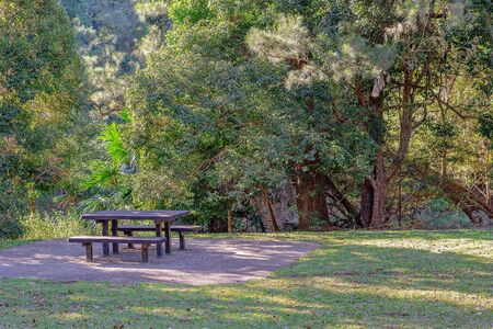Picnic tables and chairs for relaxed dining in a picturesque setting shaded by lush trees from the late afternoon sun