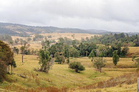 Valles ondulados de pastos de una granja lechera en un país montañoso de Australia en la cima de una cordillera, la hierba ya no es verde debido a la falta de lluvia Foto de archivo