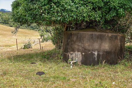 An old concrete water tank under a tree in a dairy pasture on a rural property with cow pat in the foreground