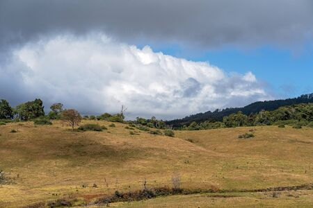 Rolling dales of dairy farm pasture in Australian hilly country at the top of a mountain range, with storm clouds rolling in Reklamní fotografie - 129925354
