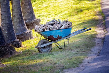 A wheelbarrow full of small chopped up logs destined for firewood Stockfoto