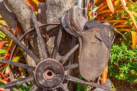 An old disintegrating wagon wheel, saddle and bridle attached to a tree as a garden display Stock fotó