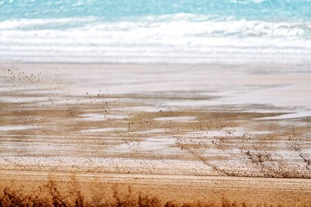 A close up view of the blurred sand stirred up by a motorcyclist racing fast along the beach Stock fotó