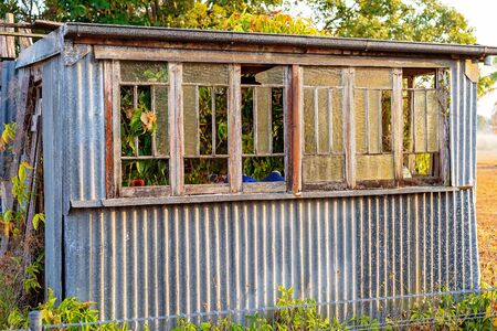 An old wrecked corrugated iron hut with smashed windows still standing in early morning light in a country paddock