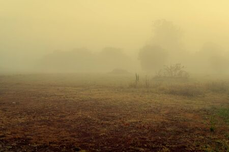 Early morning low lying fog over a country landscape