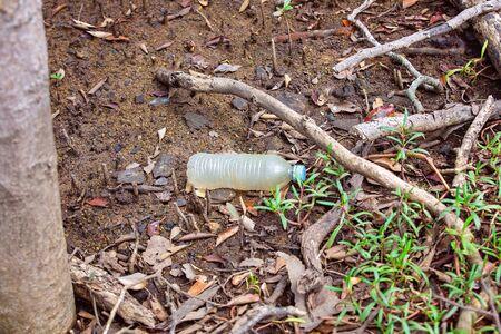 Plastic bottle littering thrown amongst mangrove trees