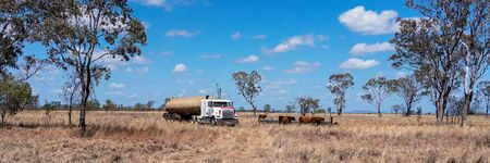 Clermont, Queensland, Australia - October 2019: A water tanker filling a trough for thirsty cattle to drink in a country paddock 新聞圖片