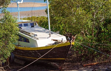 An old boat moored in amongst mangroves on the edge of a creek bank