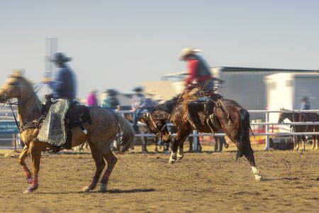 Rodeo - Cowboy riding a saddled bucking bronc