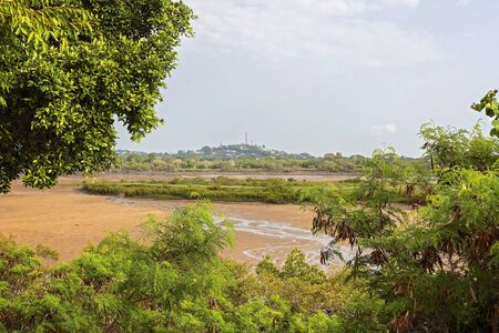 Green foliage on the banks of a river at low tide Banco de Imagens