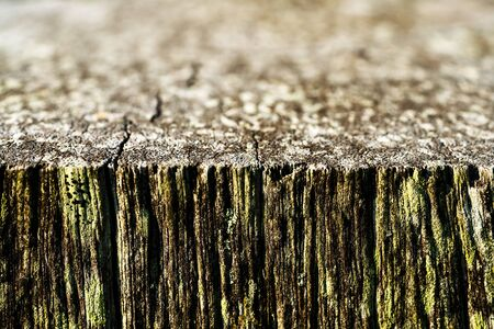 Close up of an old piece of timber in shallow depth of field creating intentional blur with a macro camera lens
