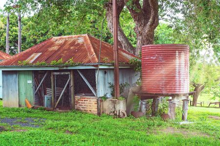 Sun rays falling on an old shed and water tank in an outdoor backyard after rainfall when the grass and foliage are lush and green