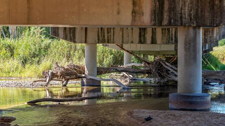 A popular creek for families swimming and paddling while parking under the bridge in the shade