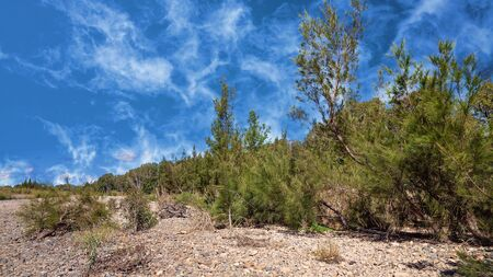A dry and stony creek bed in the Australian countryside under a beautiful blue cloudy sky