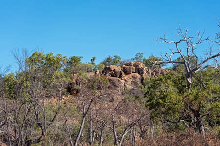 Volcanic rock in Undara national park in outback Australia