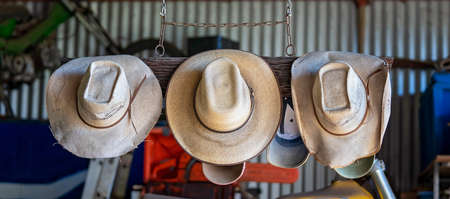 Three old straw hats hanging from chained timber in a shed