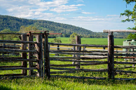 Empty cattle yards with timber fencing on a rural property