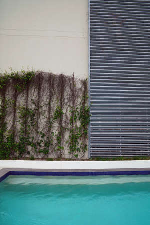 Plants trained to grow up a poolside wall of a concrete building