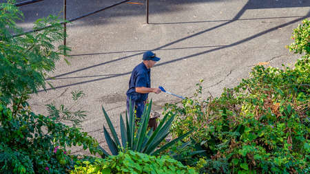 Airlie Beach, Queensland, Australia - April 2021: Man performing garden maintenance in hotel grounds