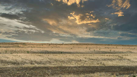Beginning of rejuvenation of the site of an open cut coal mine in Australia at sunset