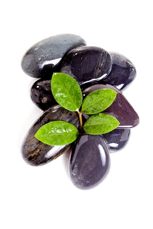 leaf and basalt stones on the white background Stock Photo - 14134007