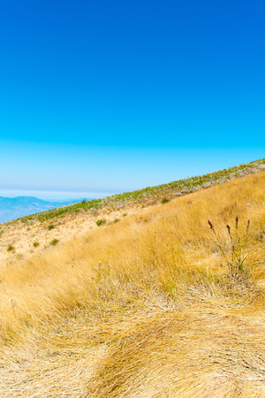 Summer landscape in the mountains, field landscape Stock Photo