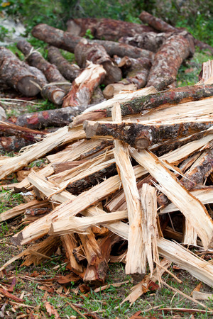 primary product: Firewood stack Stock Photo