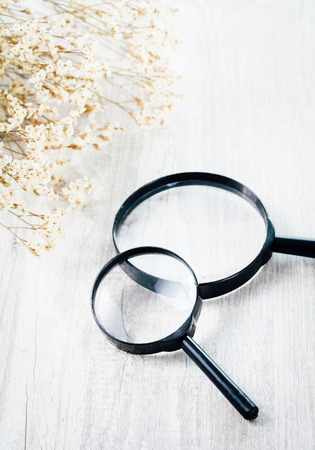 len: Two magnifying glass with flower on wood table