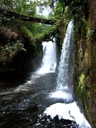 Amazon Waterval Stockfoto