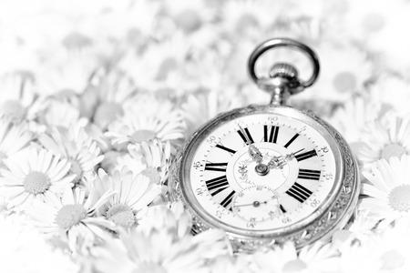 fleurs romantique: montre de poche dans une belle fleurs romantiques, version monochrome